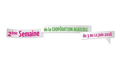 Et si on consommait coopératif ? – 9 juin – Rennes