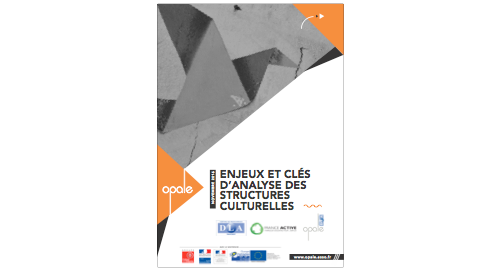 Enjeux et clés d'analyse des structures culturelles
