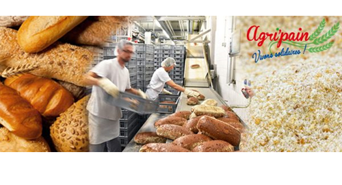 Agripain : le pain invendu crée de l'emploi